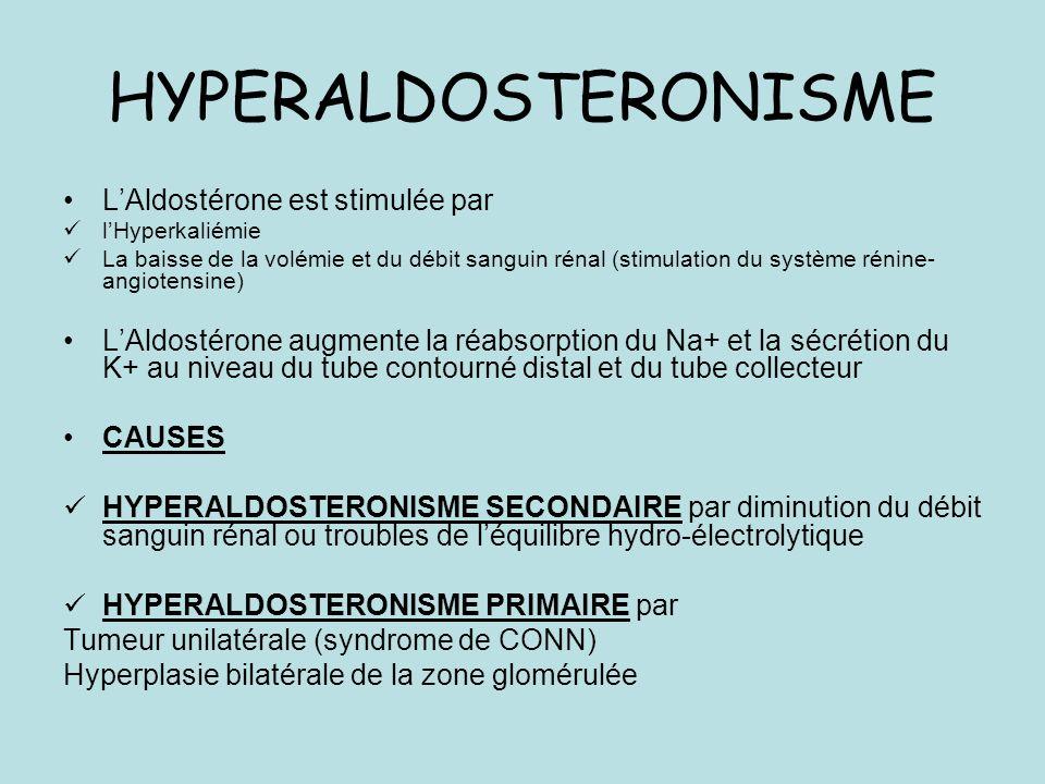 HYPERALDOSTERONISME L'Aldostérone est stimulée par