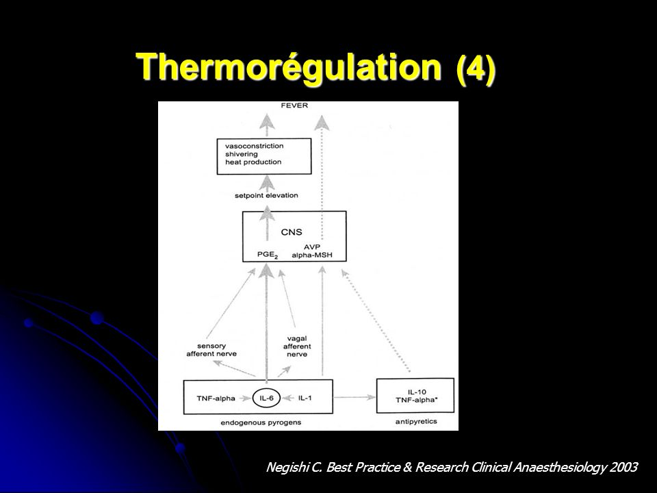 Thermorégulation (4) Negishi C. Best Practice & Research Clinical Anaesthesiology 2003