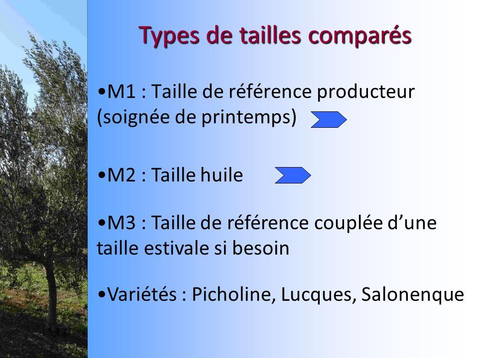 M1 : Taille de référence producteur (soignée de printemps)