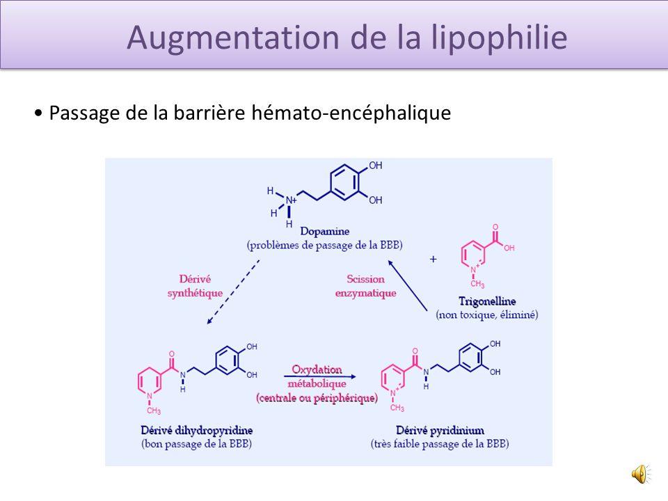 Augmentation de la lipophilie