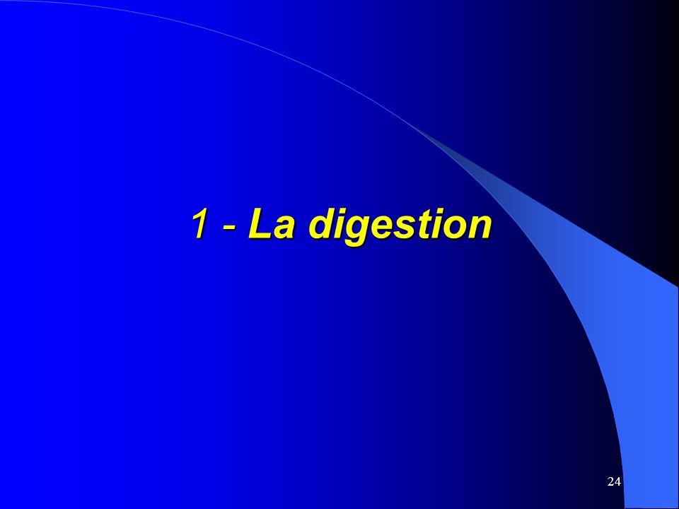 1 - La digestion