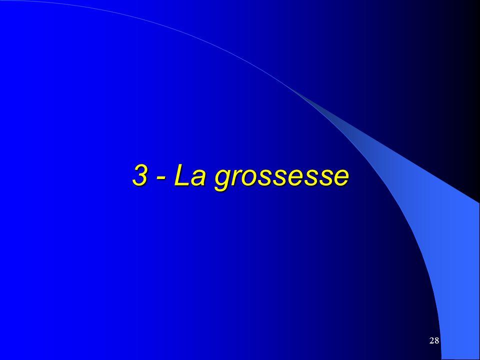 3 - La grossesse