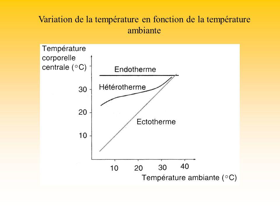 Variation de la température en fonction de la température