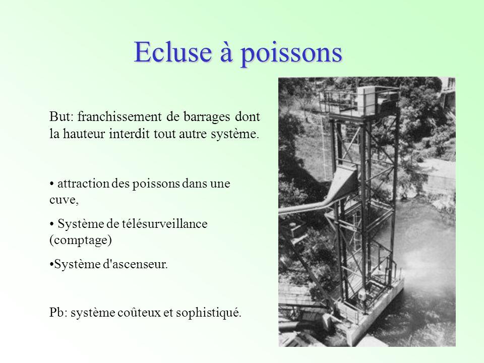 Ecluse à poissons But: franchissement de barrages dont la hauteur interdit tout autre système. attraction des poissons dans une cuve,