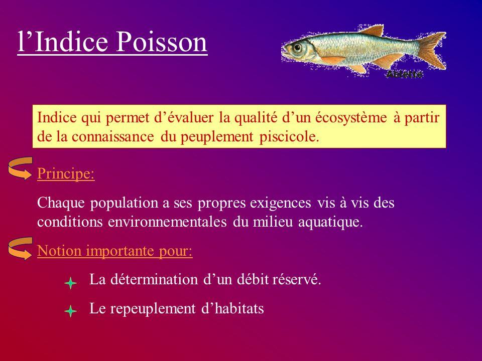 l'Indice Poisson Indice qui permet d'évaluer la qualité d'un écosystème à partir de la connaissance du peuplement piscicole.