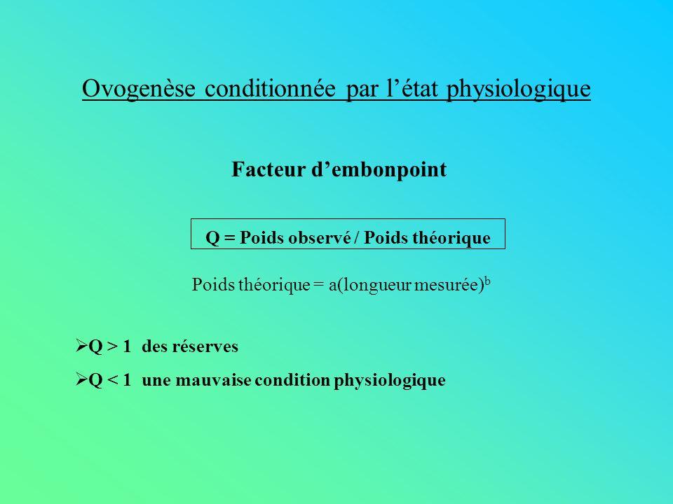 Ovogenèse conditionnée par l'état physiologique