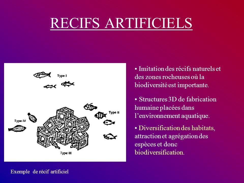 RECIFS ARTIFICIELS • Imitation des récifs naturels et des zones rocheuses où la biodiversité est importante.