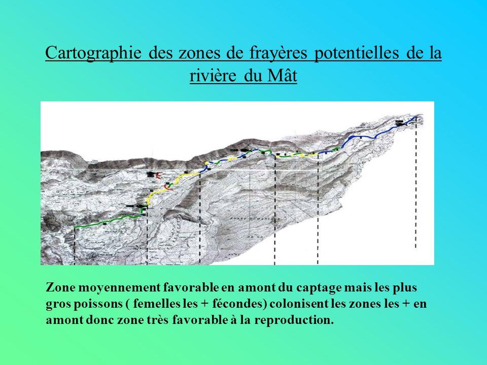Cartographie des zones de frayères potentielles de la rivière du Mât