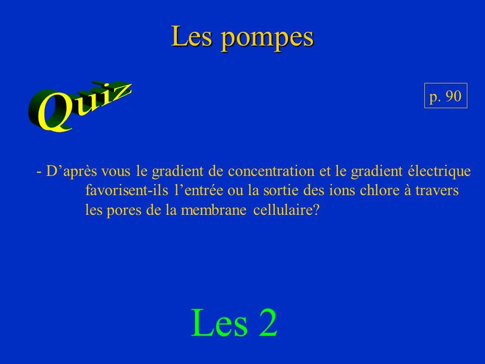 Les pompes Quiz. p. 90. D'après vous le gradient de concentration et le gradient électrique.