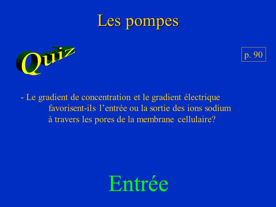 Entrée Les pompes Quiz p. 90