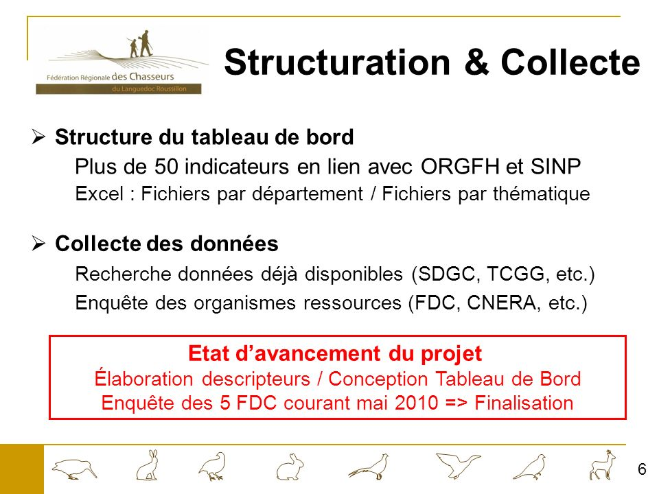 Structuration & Collecte