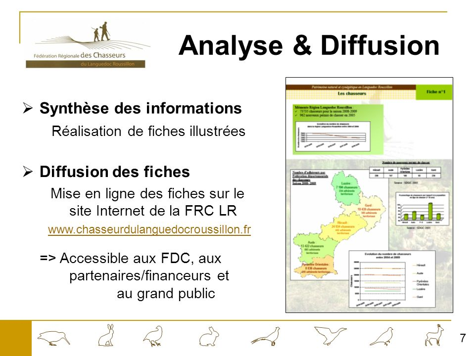 Analyse & Diffusion Synthèse des informations Diffusion des fiches
