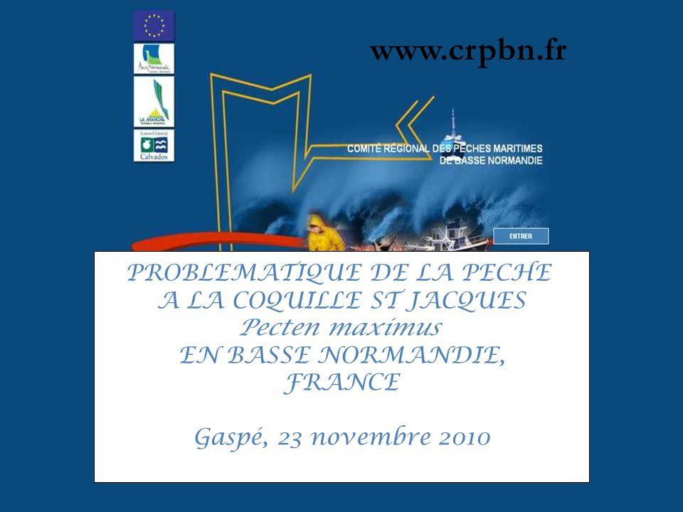 www.crpbn.fr PROBLEMATIQUE DE LA PECHE A LA COQUILLE ST JACQUES