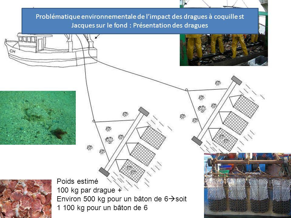 Problématique environnementale de l'impact des dragues à coquille st Jacques sur le fond : Présentation des dragues