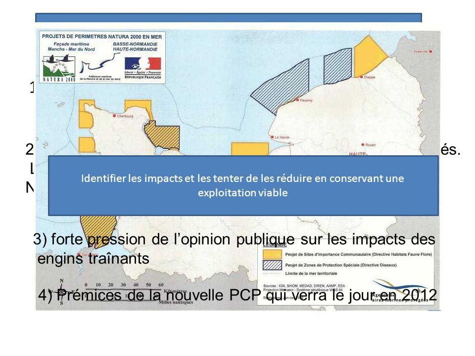 Problématique environnementale de l'impact des dragues à coquille st Jacques sur le fond : éléments du contexte