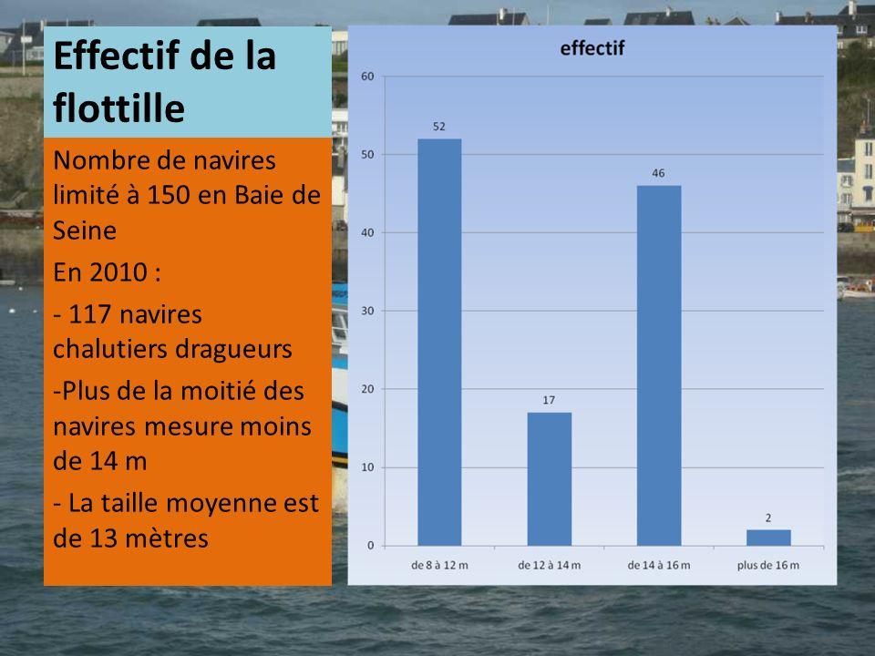 Effectif de la flottille