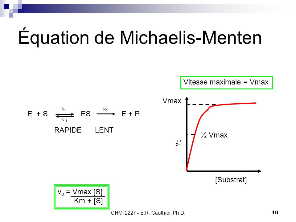 Équation de Michaelis-Menten