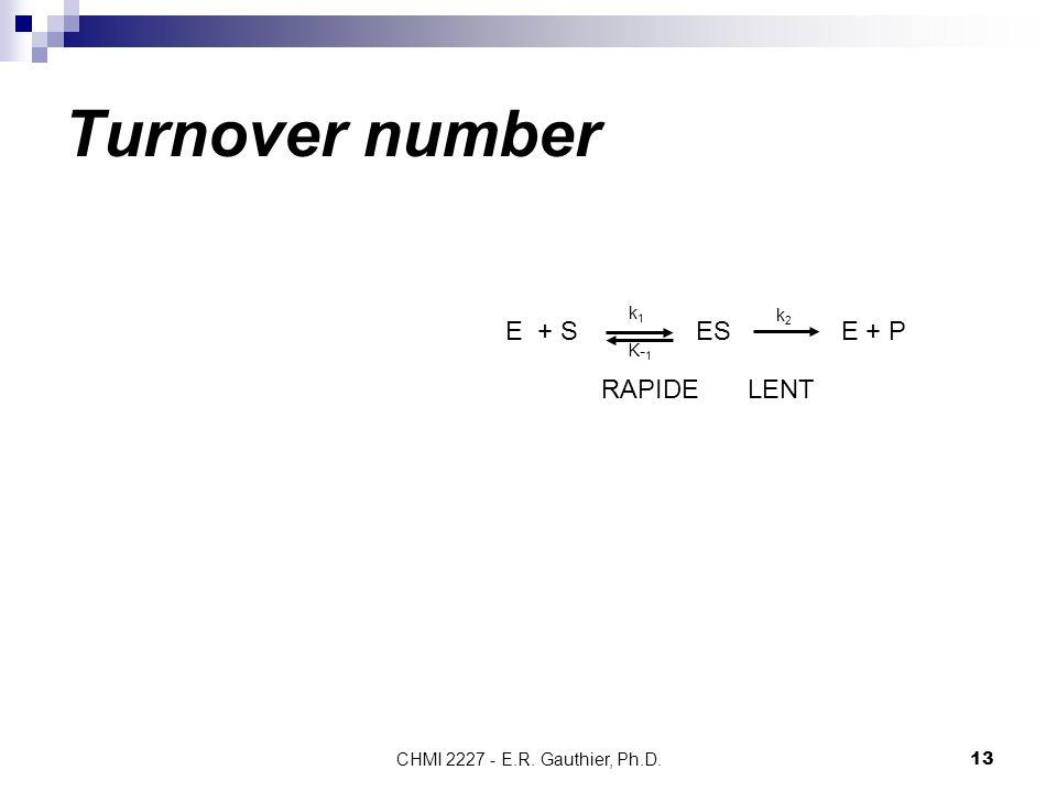Turnover number E + S ES E + P RAPIDE LENT k1 k2 K-1
