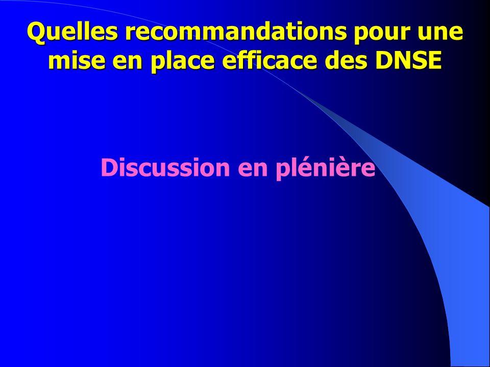 Quelles recommandations pour une mise en place efficace des DNSE