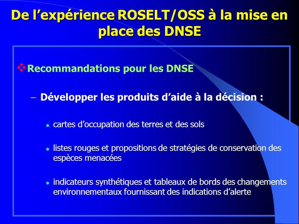 De l'expérience ROSELT/OSS à la mise en place des DNSE