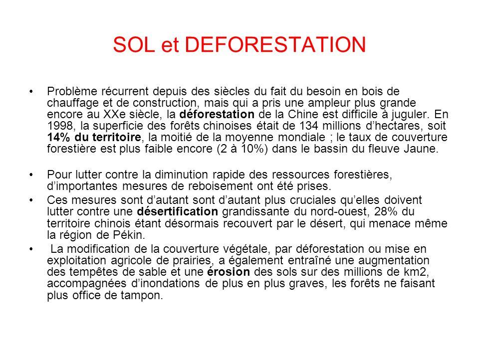 SOL et DEFORESTATION
