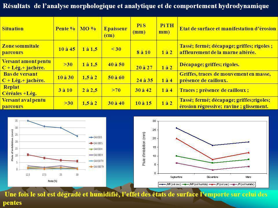 Résultats de l'analyse morphologique et analytique et de comportement hydrodynamique