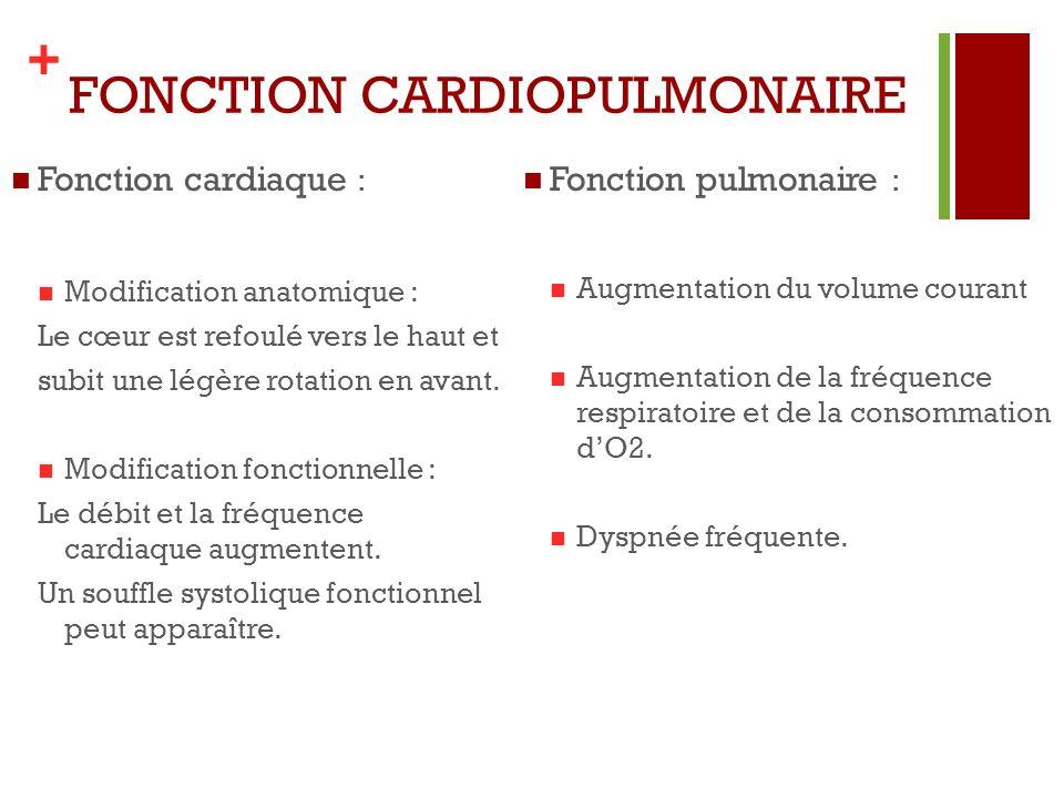 FONCTION CARDIOPULMONAIRE