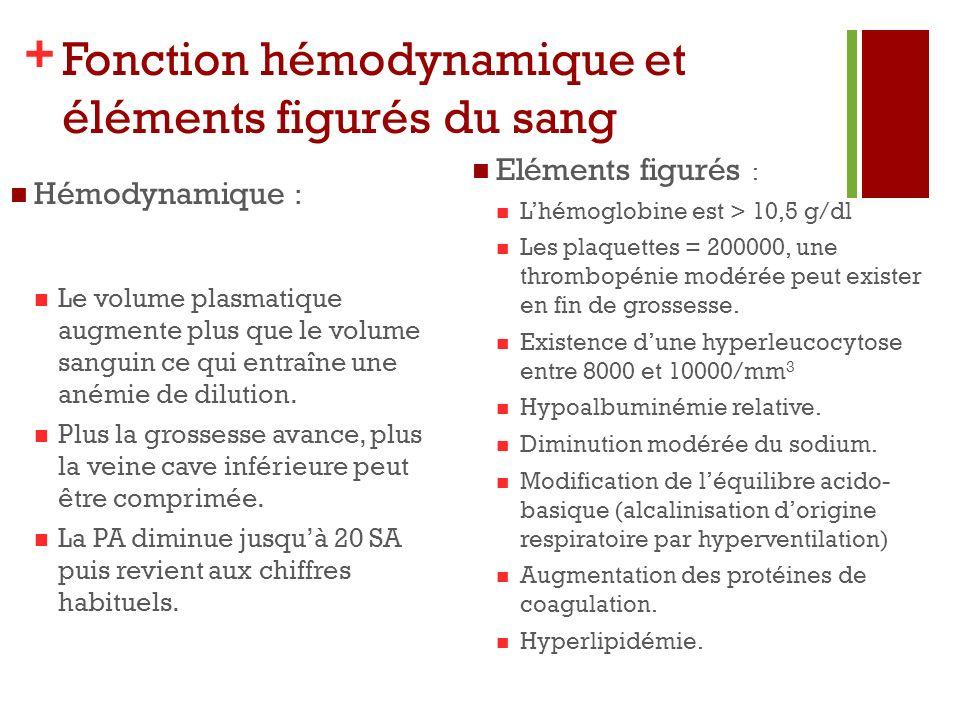 Fonction hémodynamique et éléments figurés du sang