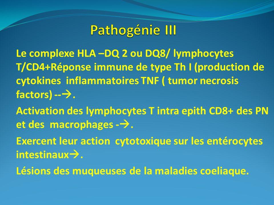 Pathogénie III