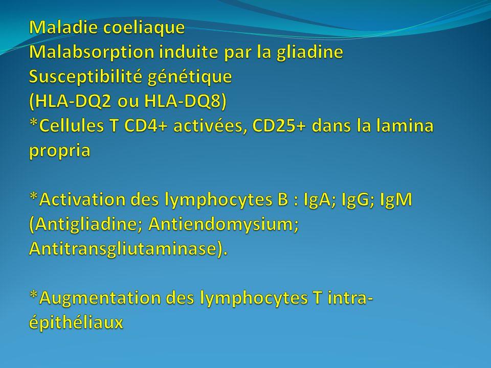 Maladie coeliaque Malabsorption induite par la gliadine Susceptibilité génétique (HLA-DQ2 ou HLA-DQ8) *Cellules T CD4+ activées, CD25+ dans la lamina propria *Activation des lymphocytes B : IgA; IgG; IgM (Antigliadine; Antiendomysium; Antitransgliutaminase).