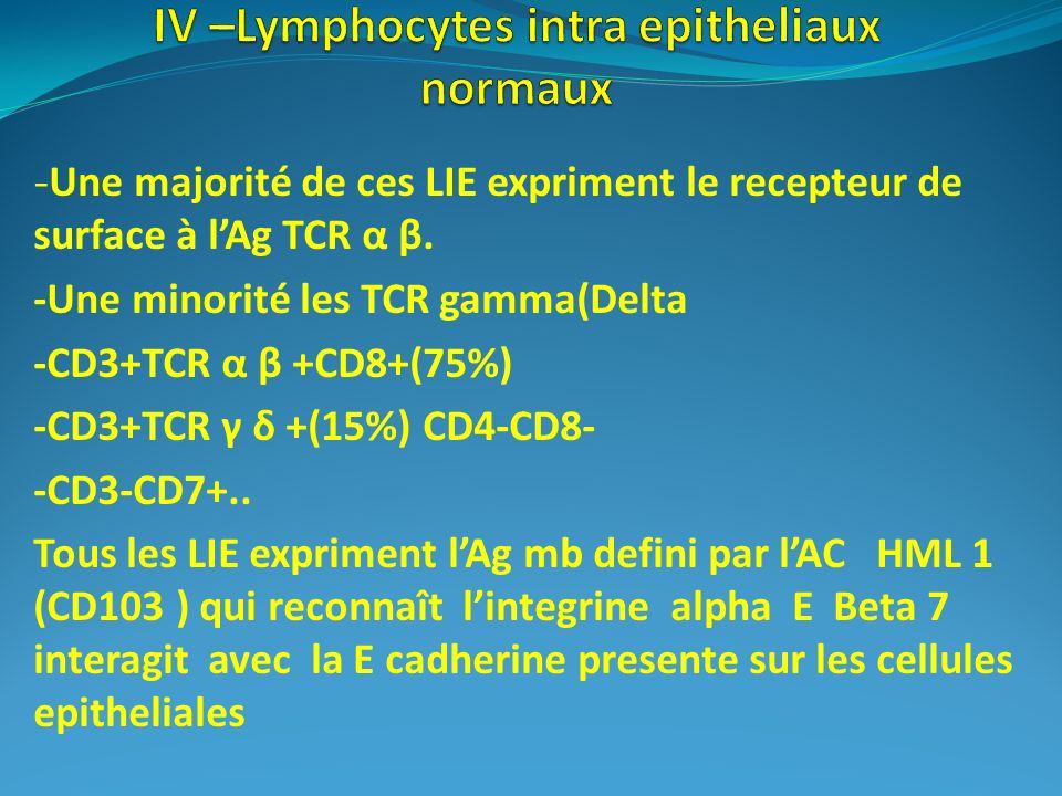 IV –Lymphocytes intra epitheliaux normaux