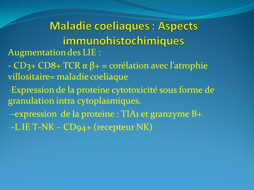 Maladie coeliaques : Aspects immunohistochimiques