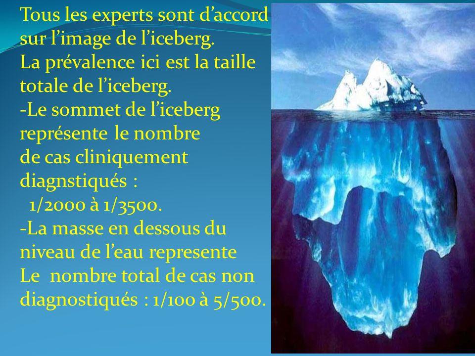 Tous les experts sont d'accord sur l'image de l'iceberg.
