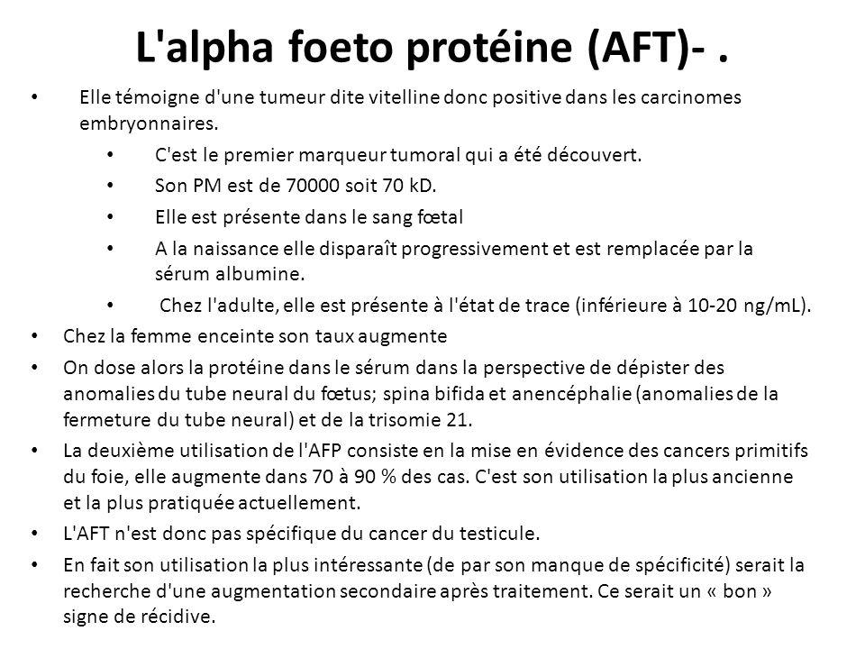 L alpha foeto protéine (AFT)- .