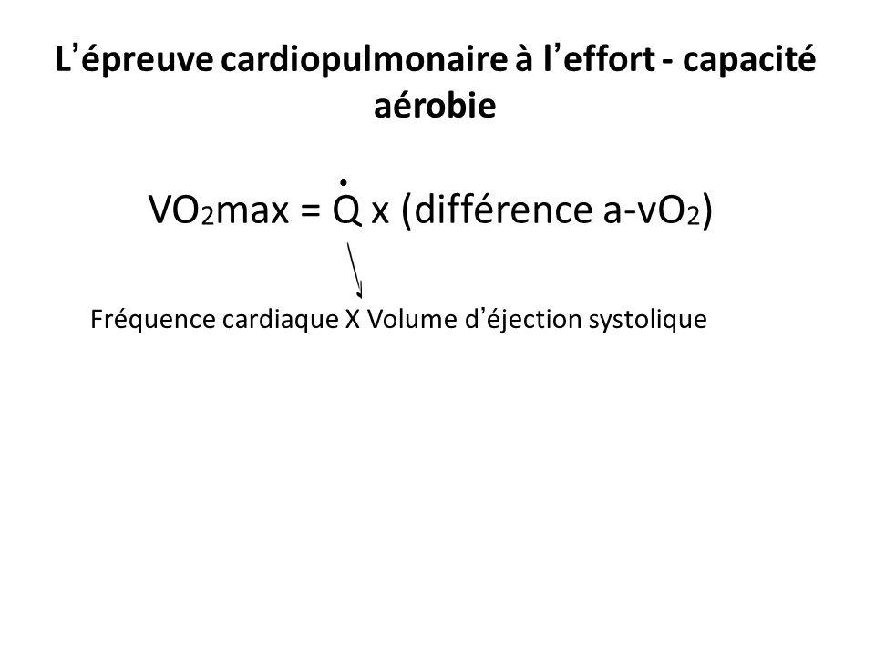 L'épreuve cardiopulmonaire à l'effort - capacité aérobie