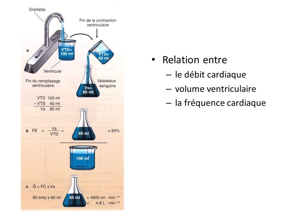 Relation entre le débit cardiaque volume ventriculaire