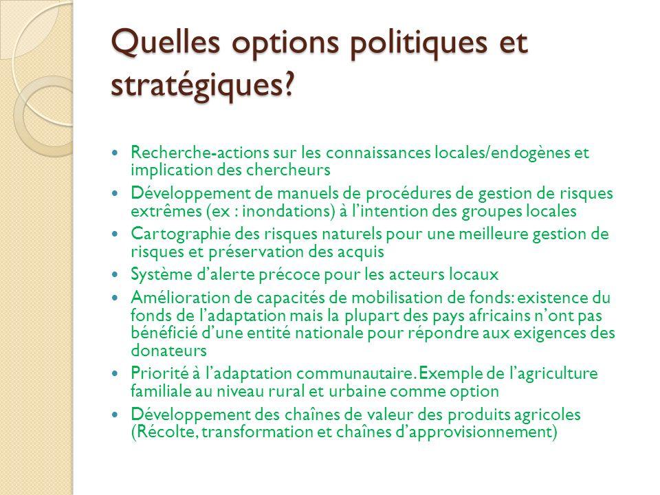 Quelles options politiques et stratégiques