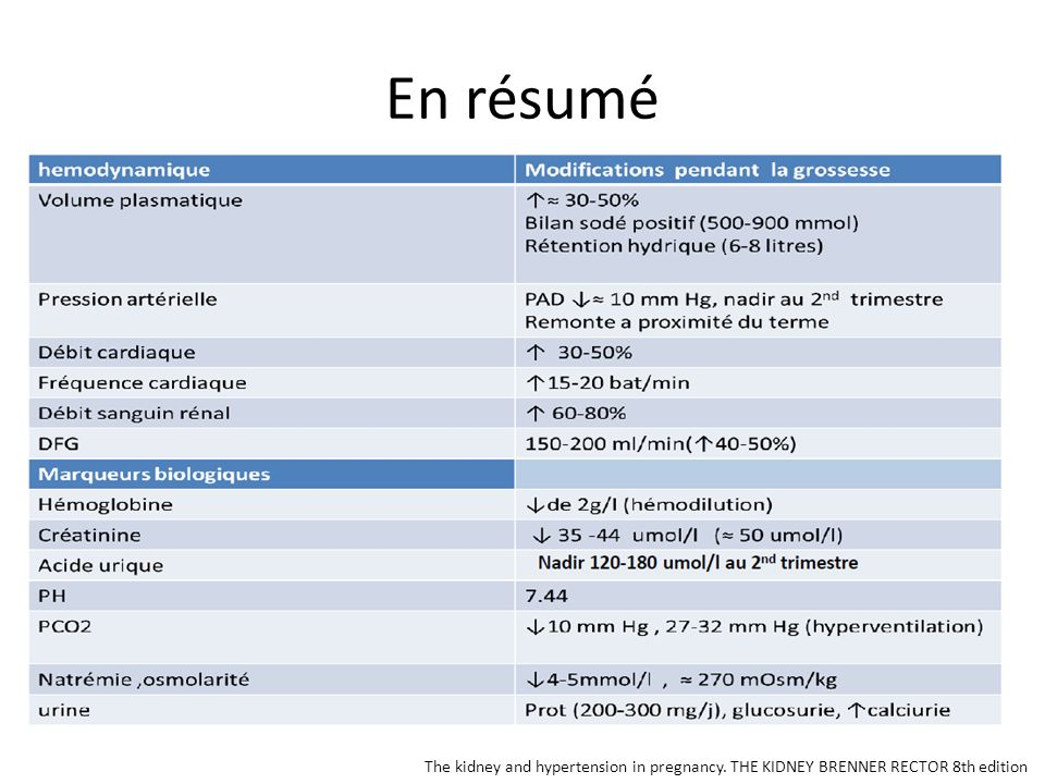En résumé The kidney and hypertension in pregnancy. THE KIDNEY BRENNER RECTOR 8th edition