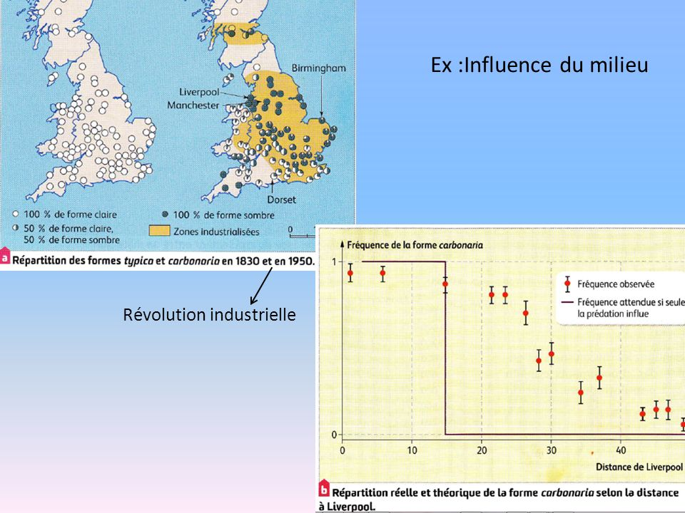 Ex :Influence du milieu