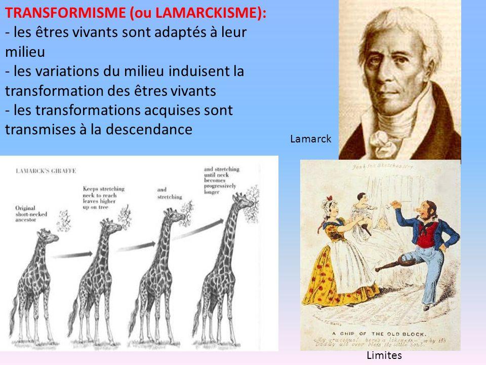 TRANSFORMISME (ou LAMARCKISME):