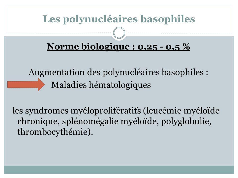 Les polynucléaires basophiles