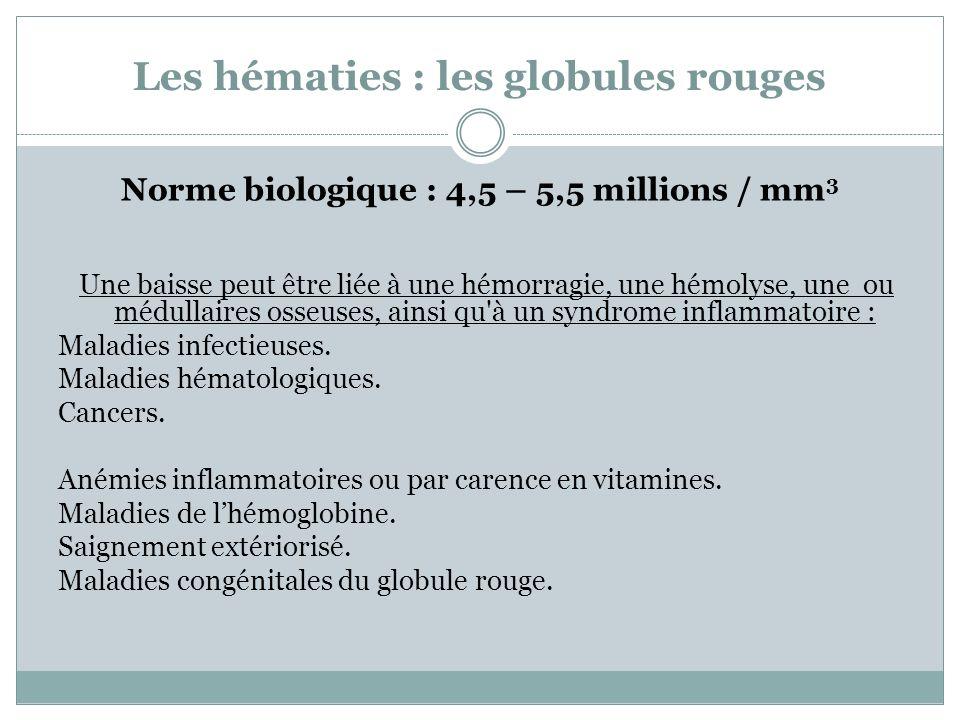 Les hématies : les globules rouges