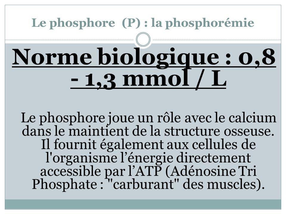 Le phosphore (P) : la phosphorémie