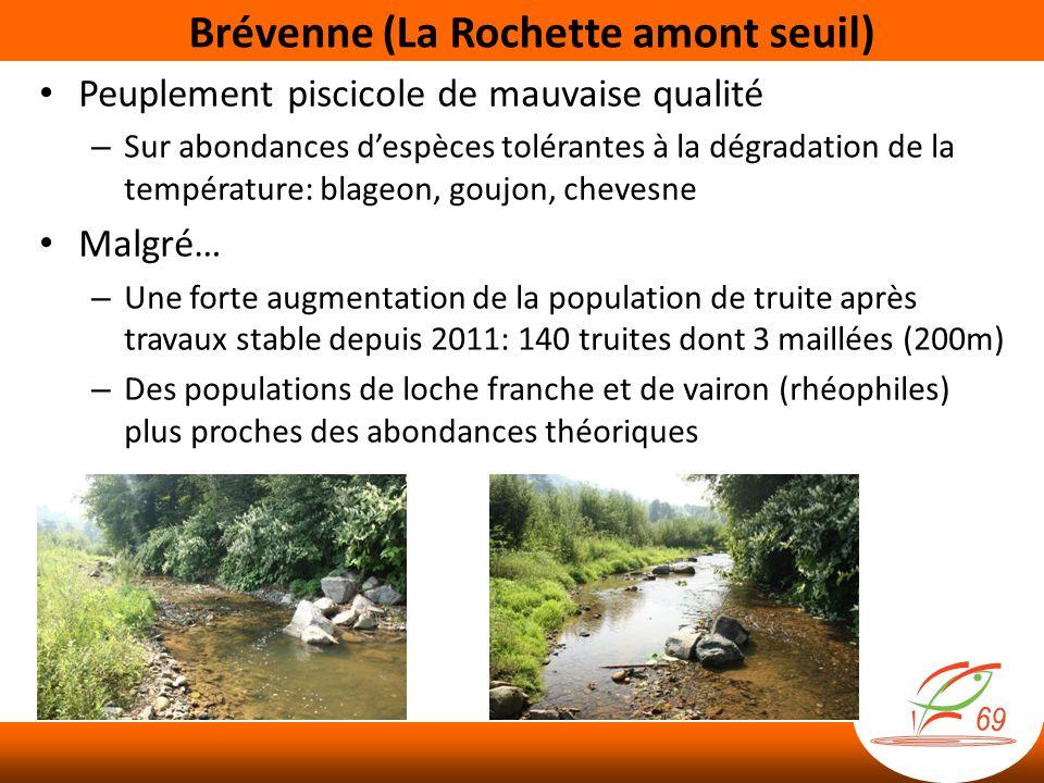 Brévenne (La Rochette amont seuil)