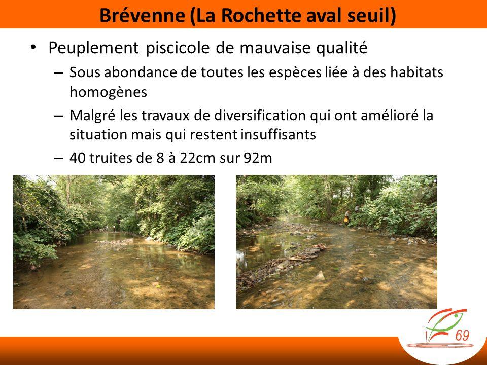 Brévenne (La Rochette aval seuil)