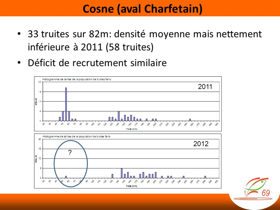 Cosne (aval Charfetain)