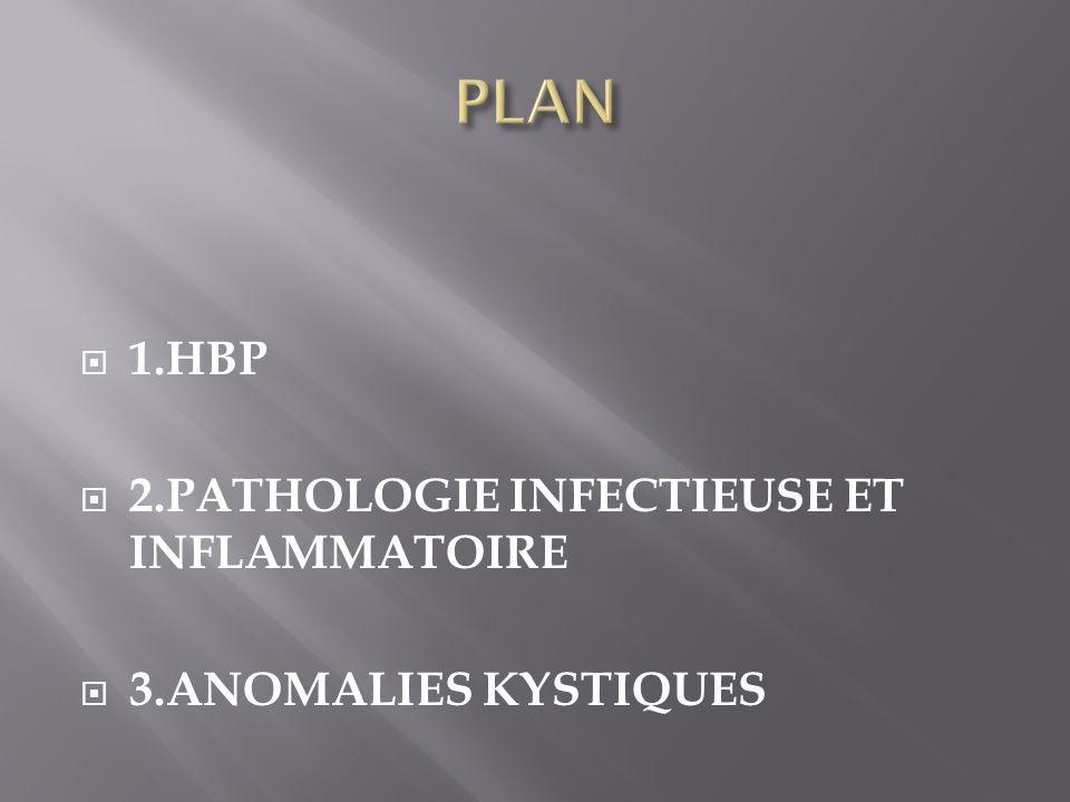 PLAN 1.HBP 2.PATHOLOGIE INFECTIEUSE ET INFLAMMATOIRE