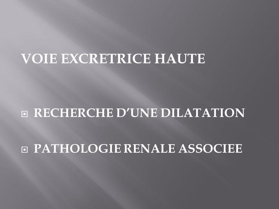 VOIE EXCRETRICE HAUTE RECHERCHE D'UNE DILATATION