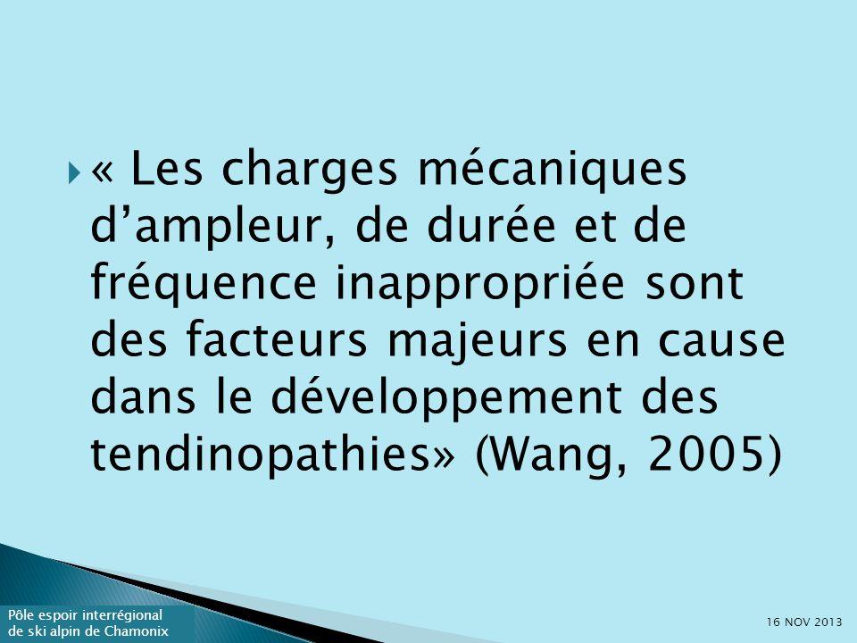 « Les charges mécaniques d'ampleur, de durée et de fréquence inappropriée sont des facteurs majeurs en cause dans le développement des tendinopathies» (Wang, 2005)