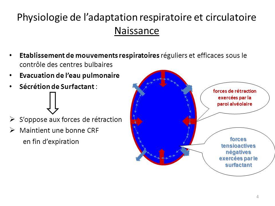 Physiologie de l'adaptation respiratoire et circulatoire Naissance
